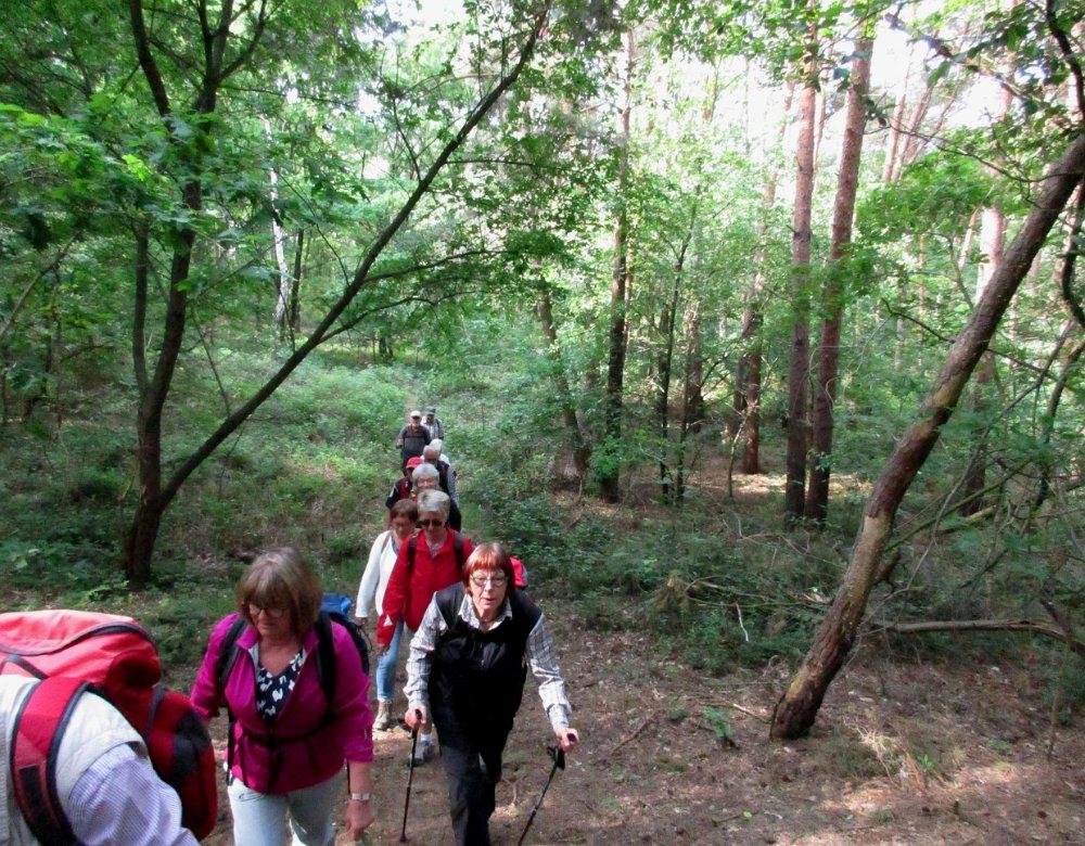 12.5.2018 Wanderung durch den Kalbecker Forst